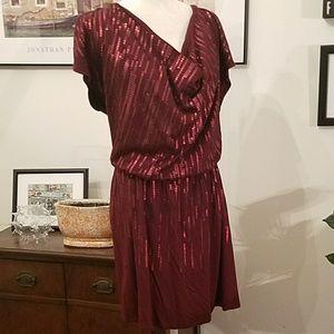 Lane Bryan sequined knit dress